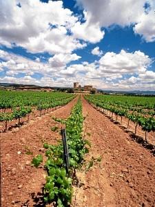 Las tierras de Bodegas Campos, uno de los lugares donde se ha probado este método.