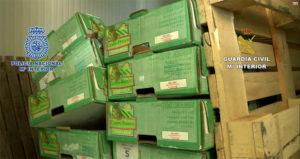 La droga era transportada en cajas de fruta.