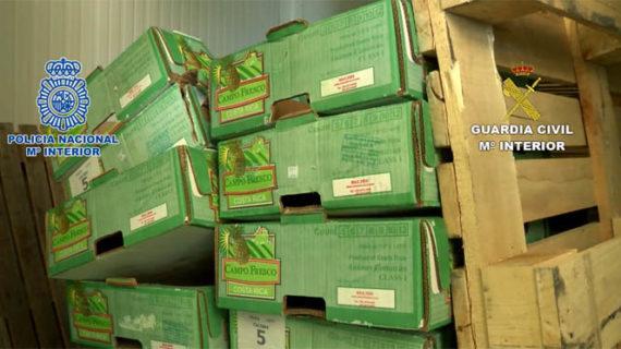 Una docena de personas detenidas tras desmantelar una red que introducía cocaína oculta en contenedores de fruta