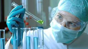 El dinero se destinará a proyectos de distinta índole. / Foto: www.wawis.com.mx/