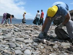 Limpieza de las playas.