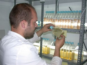 Un investigador realizando pruebas en el laboratorio.
