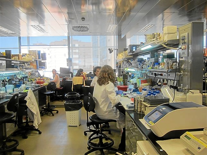 España está presente numerosos ensayos clínicos europeos.