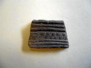 Una de las piezas encontradas. / Foto: J