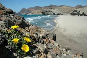 Parque Natural Cabo de Gata. / Foto: Juan Aurelio Sáez Lara.