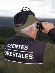 Un agente forestal. / Foto: http://www.agentesforestales.org.