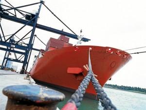 Crecen las exportaciones. / Foto: Cámara de Comercio.