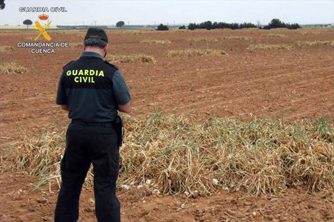 campo_robos_guardia_civil