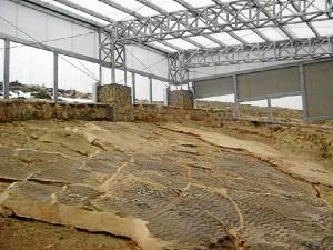 Las huellas de estos yacimientos permiten reconstruir la evolución de los dinosaurios. / Foto: http://icnitasdinosaurio.mcu.es/