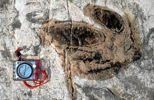 Yacimiento de Tambuc. / Foto: http://icnitasdinosaurio.mcu.es/
