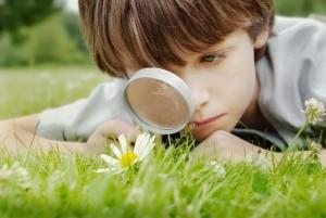 La curiosidad de un niño.