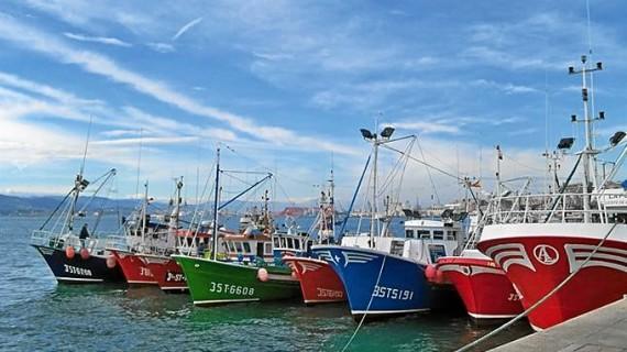 Agricultura establece un plan de gestión para los barcos de arrastre de fondo que faenan en aguas portuguesas