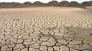 Sequía. /