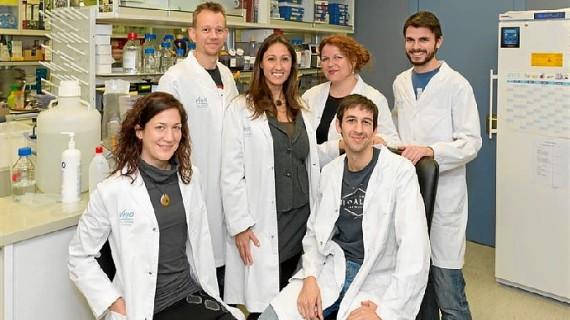 Científicos españoles prueban la eficacia de una nueva estrategia terapéutica contra el tumor cerebral más agresivo