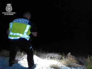 Imagen de un agente tratando de coger al buitre. / Foto: Policía Nacional
