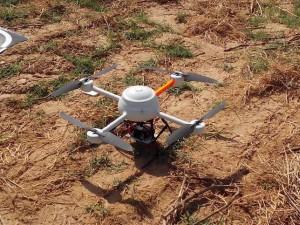 Un dron podrá comprobar el estado de las hojas. / Foto: Europa Press.