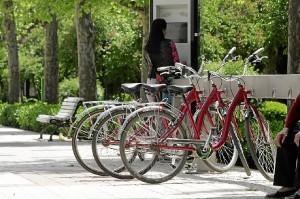 Los ciudadanos pueden contribuir a combatir el cambio climática, por ejemplo, usando más la bicicleta y menos el coche.