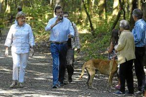 Merkel apoyará la candidatura de Luis de Guindos.
