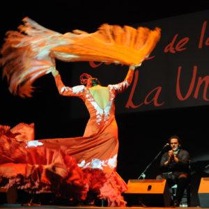 Festival del Cante de las Minas.