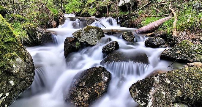 La Fundación Patrimonio Natural organiza sendas guiadas a través de la Sierra de Guadarrama