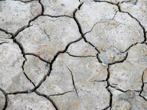 Las medidas pretenden luchar contra la sequía. / Foto: Europa Press
