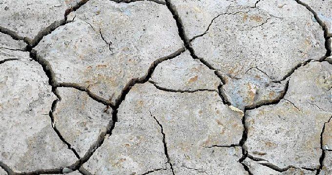 El Gobierno aprueba una convocatoria de préstamos para los afectados por la sequía