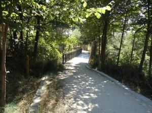 Zona de sombra del Camino Natural del Tajo. / Foto: magrama.gob.es
