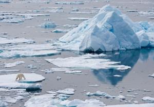 Lucha por el Ártico.