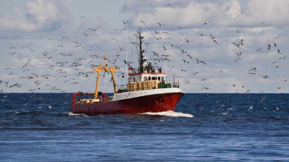Las exportaciones del sector agroalimentario y pesquero alcanzaron 3.439 millones en noviembre