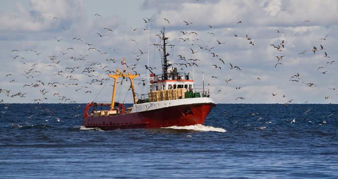 Abierta la convocatoria para financiar proyectos de comercialización del sector pesquero
