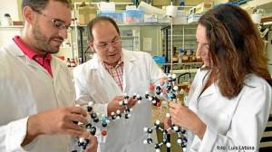 Las moléculas se activan en respuesta a diversos estímulos. / Foto: www.um.es