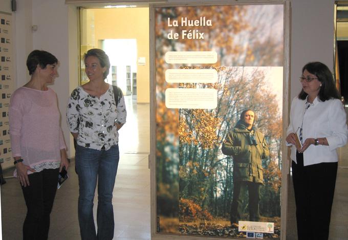 Una exposición reconoce la importancia de proteger el arbolado monumental y los bosques maduros españoles