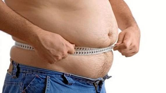Conociendo la grasa…
