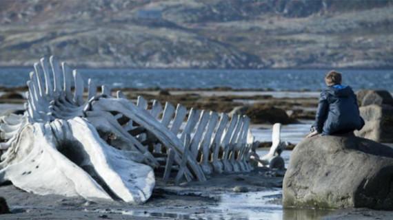 'Leviathan', una firme candidata al Giraldillo de Oro
