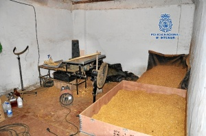 Fábrica de tabaco ilegal