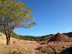 Lugar donde comenzarán las excavaciones. / Foto: Europa Press.