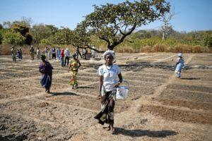 Alianza por la Solidaridad y Aprodel de Guinea Bissau galardonadas por la ONU. /  http://www.alianzaporlasolidaridad.org