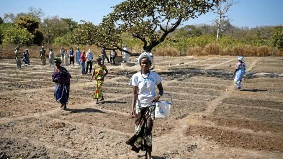 La ONU premia a una ONG española por lograr que casi 600 mujeres consigan la propiedad de la tierra que cultivan