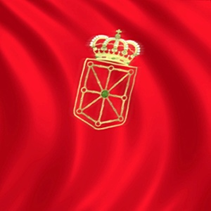 Día de Navarra 2014.