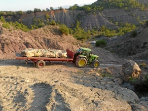 Paleontólogos españoles llevan a cabo la extracción de un cuello de dinosaurio de más de cinco metros