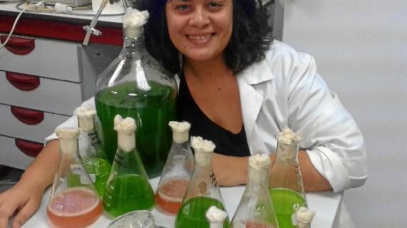 Una investigación de la Universidad de Huelva descubre una nueva microalga marina autóctona de las Marismas del Odiel