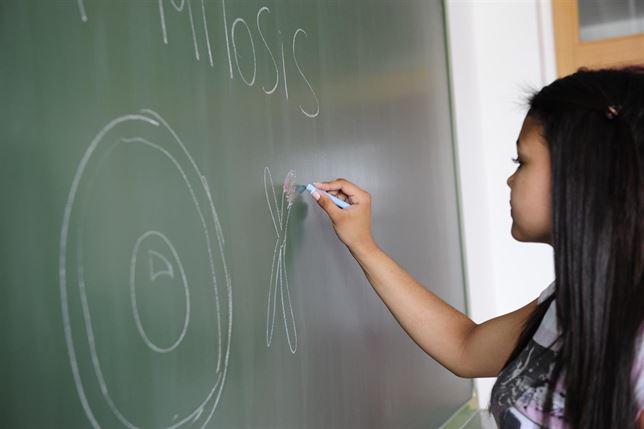 El Código Penal amplía a enseñanza privada y concertada la inhabilitación como docente a condenados por abusos a menores