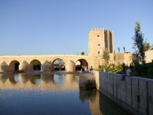 Vistas de la Torre de Calahorra junto al puente.
