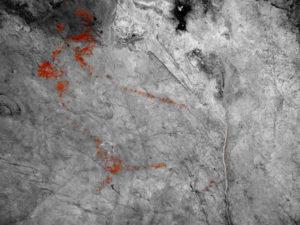 Pinturas rupestres localizadas en la cueva Danbolinzulo de Zestoa. / Foto: Diputación.