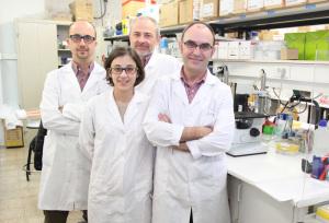 Los investigadores del Instituto de Ciencias Biomédicas de la CEU-UCH Enric Poch, José Terrado, Begoña Ballester e Ignacion Pérez Roger.