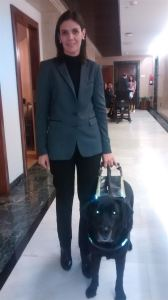 La parlamentaria es guiada por su perro Sam. / Foto: Europa Press.