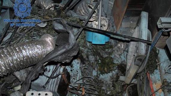 La Policía localiza en Alaquàs un laboratorio de marihuana al incendiarse por un fallo en su sistema eléctrico