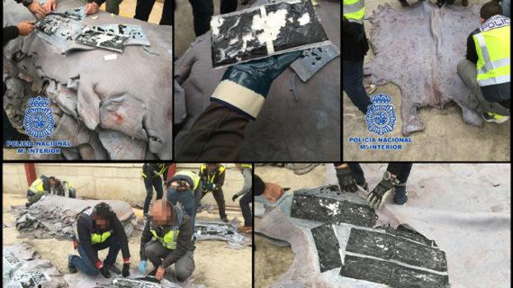 La Policía Nacional interviene 510 kilos de cocaína ocultos en un contenedor de pieles de bovino