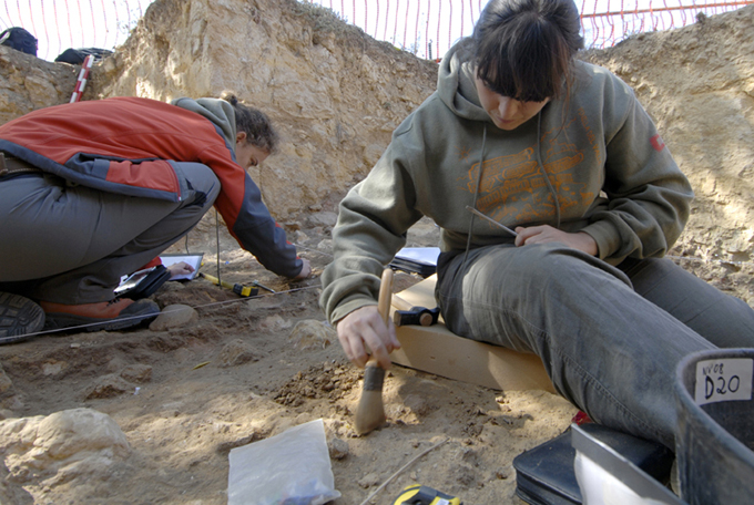 Salen a la luz los restos de un reptil marino que nadaba por Madrid hace 85 millones de años