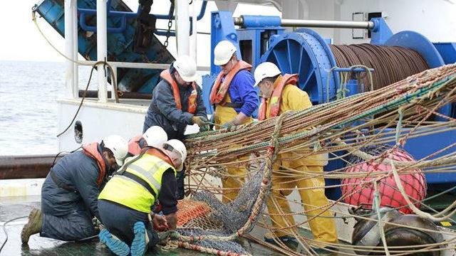 Un buque del Instituto de Oceanografía analizará el ecosistema marino del noroeste peninsular
